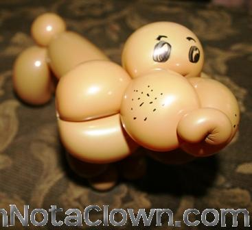 A new twist on a balloon dog